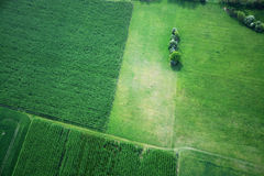 Fields and Meadows, Brandenburg, Germany Stock Photography