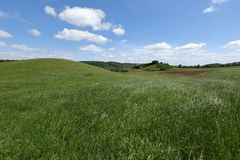 Fields and meadows in Germany Stock Photography