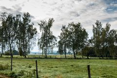 Fields and meadows. Green fields, meadows and forests with bright sky and clouds Stock Photography