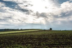 Fields and meadows. Green fields, meadows and forests with bright sky and clouds Stock Photos