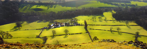 Fields and meadows landscape stock image
