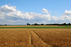 Fields and meadows. Landscape with fields and meadows in Germany stock image