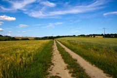 Fields and meadows. Landscape with fields and meadows in Germany Stock Images