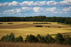 Fields and meadows of Scania, Sweden Royalty Free Stock Image