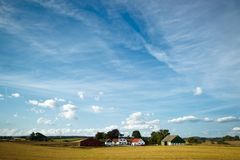 Fields and meadows of Scania, Sweden Royalty Free Stock Photo