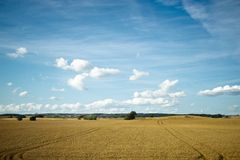 Fields and meadows of Scania, Sweden Royalty Free Stock Photography