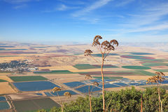 Fields, meadows and villages from the hill Gilboa Stock Photos