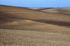 fields moravian Стоковое Изображение RF