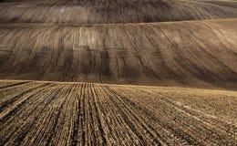 fields moravian Стоковые Изображения RF