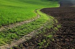 fields moravian Стоковая Фотография