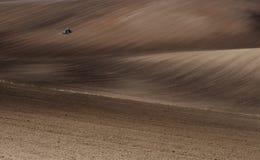 fields moravian VI Стоковая Фотография RF