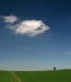 fields moravian x Стоковое фото RF