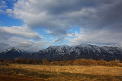 Fields and Mount Timpanogos Royalty Free Stock Image