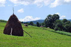 The fields are in mountains. The fields are in Carpathian mountains royalty free stock photo