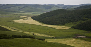 Fields in the mountains Royalty Free Stock Photos