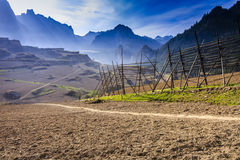 Fields in the mountains Stock Images