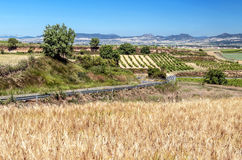Fields in the mountains of Soria Royalty Free Stock Photography