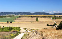 Fields in the mountains of Soria. With mountains in Spain on a sunny day Royalty Free Stock Photography