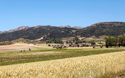 Fields in the mountains of Soria. With mountains in Spain on a sunny day Stock Images