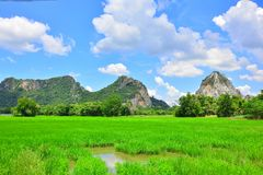 The fields are mountains. There is a blue sky as the background Stock Photography