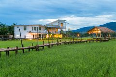 Fields in Nan Thailand nature outdoor landscape at Tanong homestay. In Thailand Royalty Free Stock Image