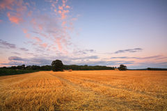 Fields near city of Oxford. Royalty Free Stock Photo