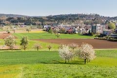 Fields near Fislisbach, Switzerland Royalty Free Stock Photos