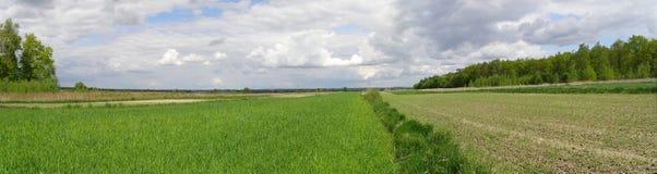 Fields near Lublin, Poland Stock Image