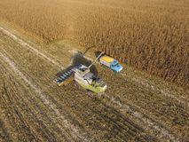 Combine harvester pours corn grain into the truck body. Harveste. Fields next to Krasnodar, Russia - September 15, 2017: Combine harvester pours corn grain into Royalty Free Stock Photos