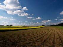 fields ängar Arkivfoto