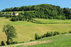 Fields in north italy Royalty Free Stock Photography