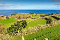 Fields at the ocean coast, Azores, Portugal. View to the green field, town and mountains at the Atlantic ocean coast, San Miguel, Azores, Portugal Stock Images