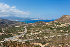 Fields of olive trees, Crete Stock Photography