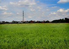 Fields on the outskirts of the city Losino-Petrovsky. Series: Nature of Russia. Landscapes and picturesque views of Russian nature. Can be used as postcards royalty free stock image