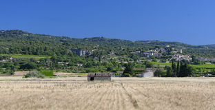 Fields in Provence. Cereal fields in Provence, France Stock Photography