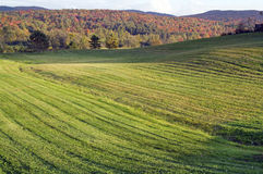 Fields in Quebec in autumn. Quebec fields surrounded by breathtaking mountain and landscapes in autumn royalty free stock photo