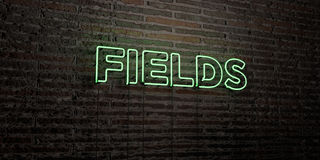 FIELDS -Realistic Neon Sign on Brick Wall background - 3D rendered royalty free stock image. Can be used for online banner ads and direct mailers Stock Photo
