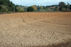 Fields Stock Photography
