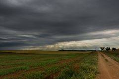 Fields and a road with storm. Grain fields and a road under a overcast sky with some sunbeams royalty free stock image