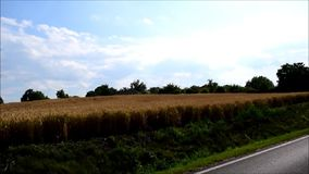 Fields, roads and trees. stock footage