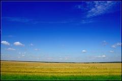 fields ryss Royaltyfri Fotografi