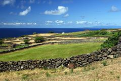 Fields on Sao Jorge island Royalty Free Stock Photography