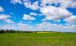 Fields set against a beautiful sky Royalty Free Stock Photos
