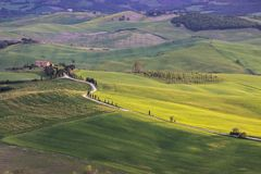 Sunrise in Tuscany in Val di Orcia near Pienza Royalty Free Stock Images