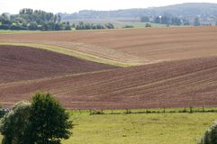 Fields on the slopes. Stock Photo