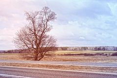 European landscape in March. Added color filter Royalty Free Stock Photo