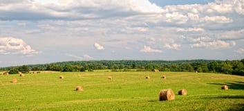 fields sommar royaltyfri bild