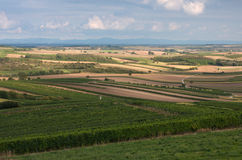 Fields of South Moravia Royalty Free Stock Photography