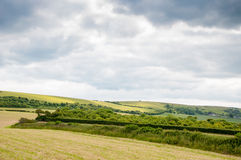 Fields in Southern England Royalty Free Stock Photos