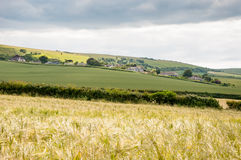 Fields in Southern England Royalty Free Stock Image